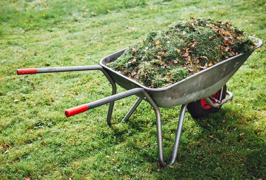 What To Do With Yard Waste