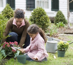 Choosing a Project for Your Garden