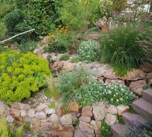 What Not to Overlook in Your Utah Landscape Design