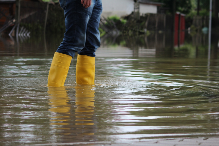 How to Drain a Flooded Yard 3 Smart Draining Strategies That Work