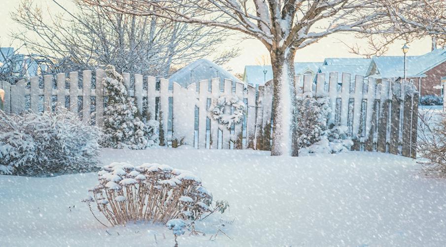 Winter Garden Prep: How to Prepare Your Garden for Winter Months