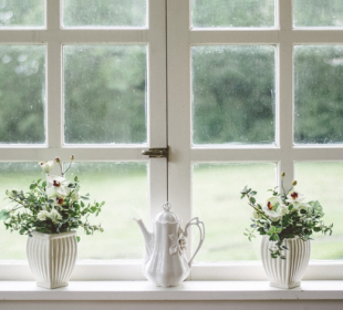 Which Type of Windows Will Look Best for Your Home?