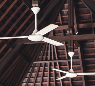 Ultimate Double Ceiling Fan Buyer's Guide